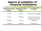 nature of liabilities of financial institutions