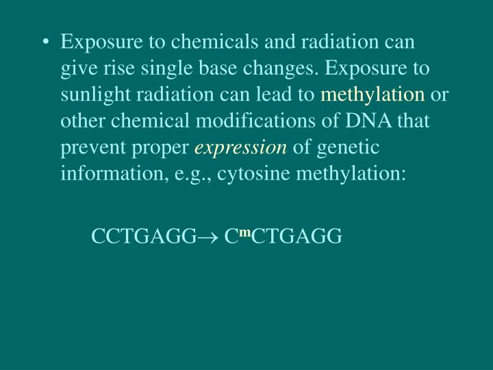Exposure to chemicals and radiation can give rise single base changes. Exposure to sunlight radiation can lead to
