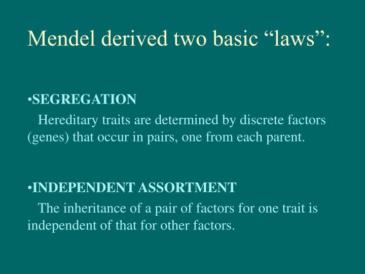 "Mendel derived two basic ""laws"":"