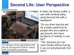 second life user perspective