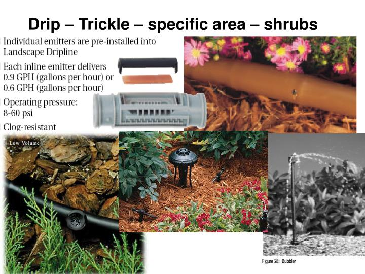 Drip – Trickle – specific area – shrubs