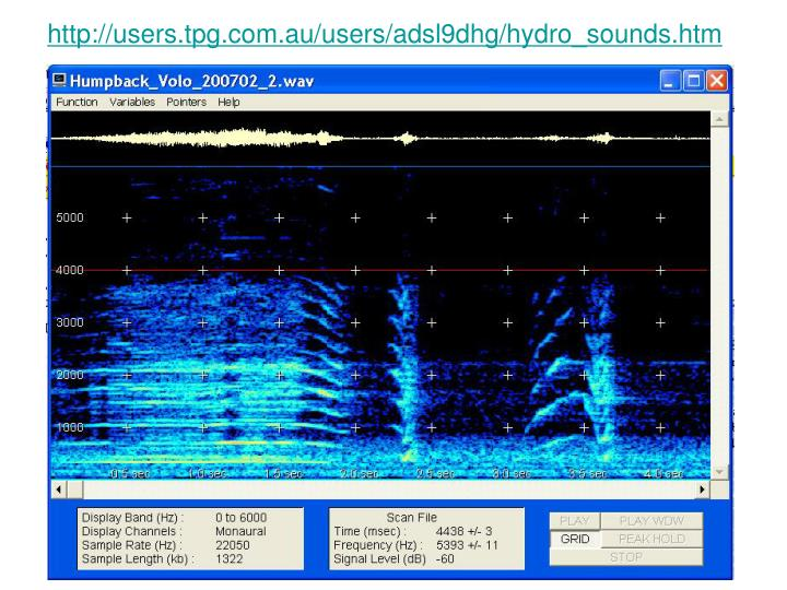 http://users.tpg.com.au/users/adsl9dhg/hydro_sounds.htm