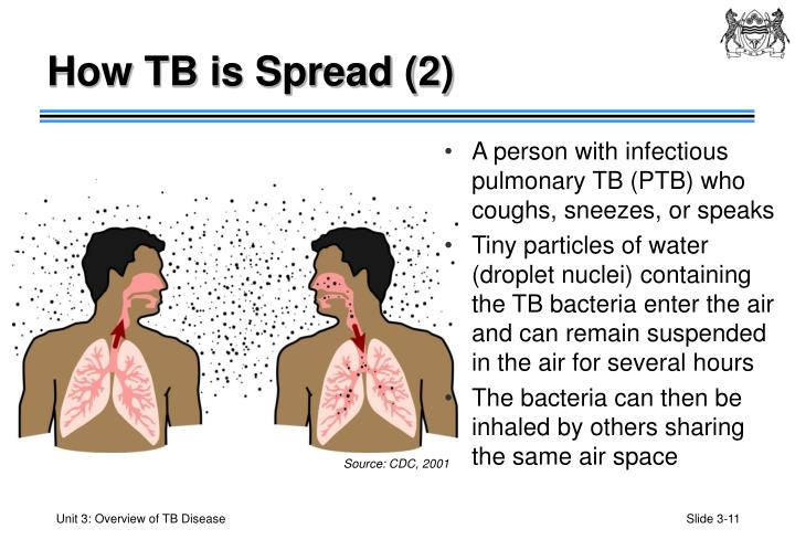 How TB is Spread (2)