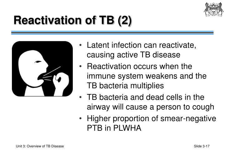 Reactivation of TB (2)