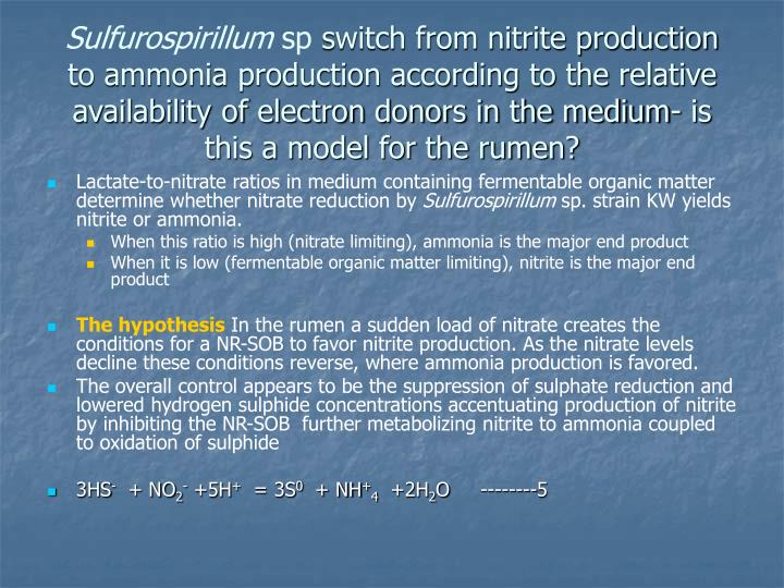 Sulfurospirillum