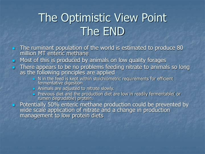 The Optimistic View Point