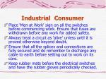 industrial consumer