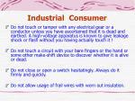 industrial consumer2