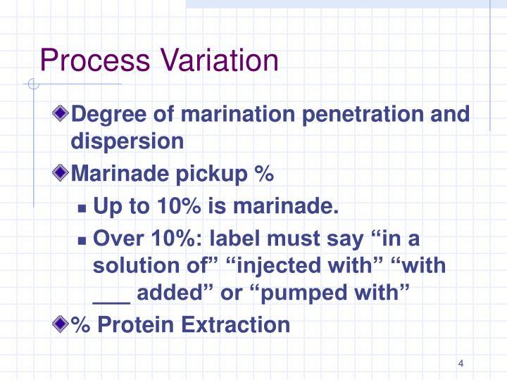 Process Variation