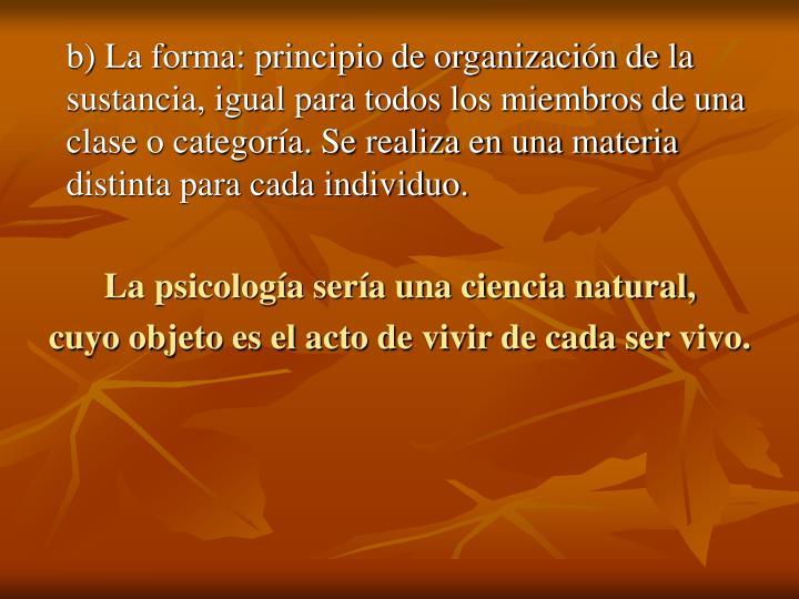 b) La forma: principio de organización de la sustancia, igual para todos los miembros de una clase o categoría. Se realiza en una materia distinta para cada individuo.