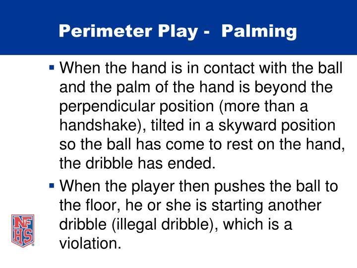 Perimeter Play -  Palming