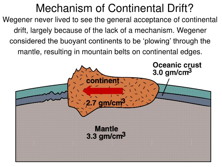 Wegener never lived to see the general acceptance of continental drift, largely because of the lack of a mechanism. Wegener considered the buoyant continents to be 'plowing' through the mantle, resulting in mountain belts on continental edges.