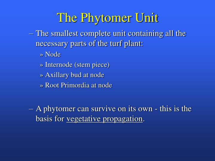 The Phytomer Unit