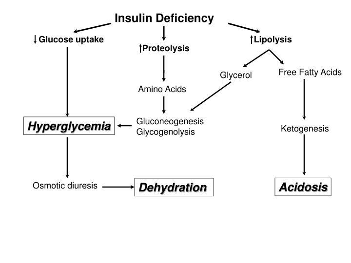 Insulin Deficiency
