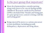 is the peer group that important