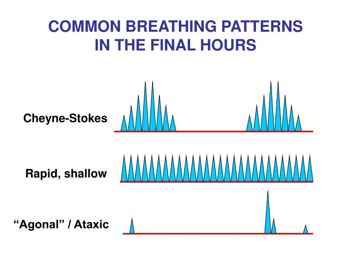 COMMON BREATHING PATTERNS IN THE FINAL HOURS