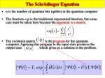 the schr dinger equation1