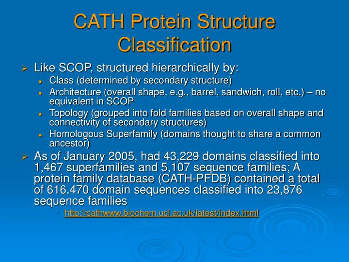 CATH Protein Structure Classification