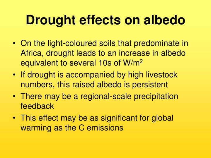 Drought effects on albedo