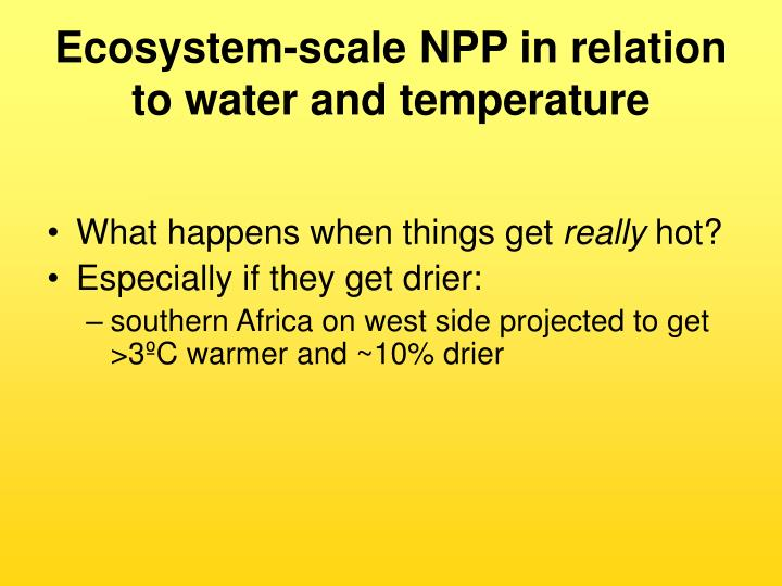 Ecosystem-scale NPP in relation to water and temperature