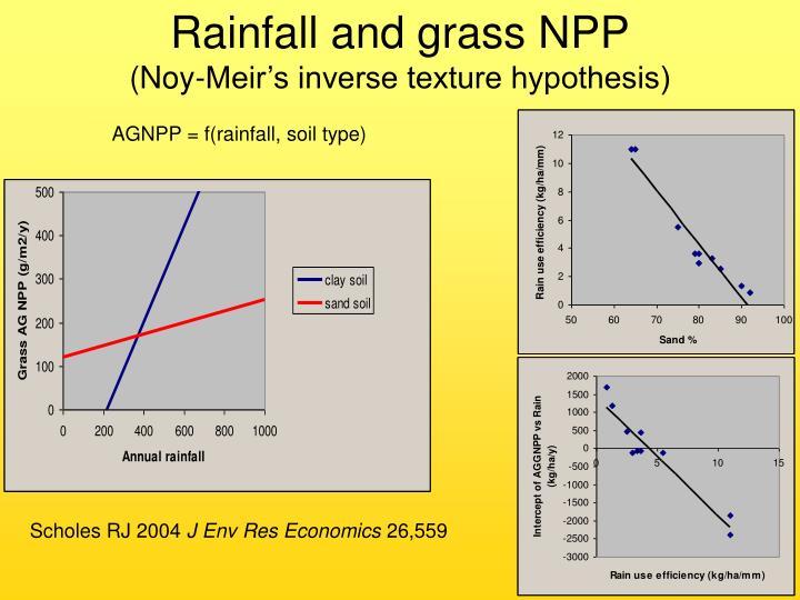 Rainfall and grass NPP