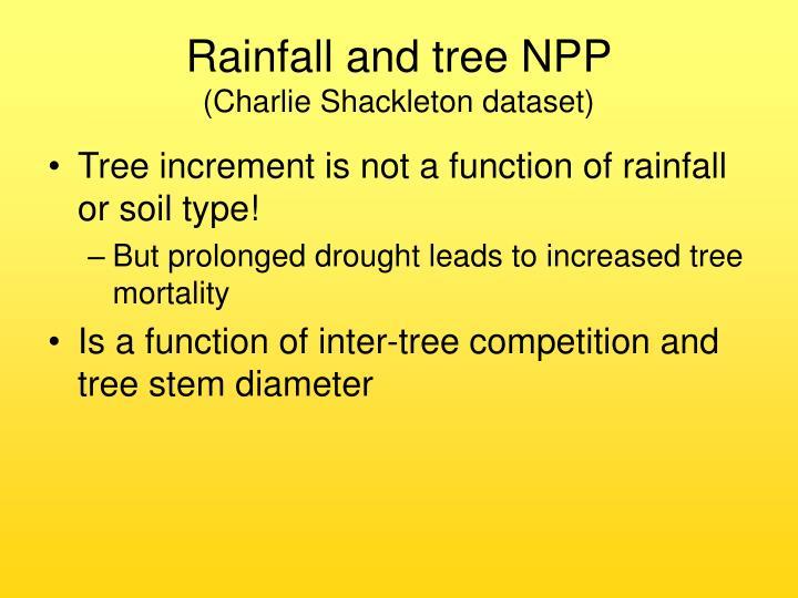 Rainfall and tree NPP