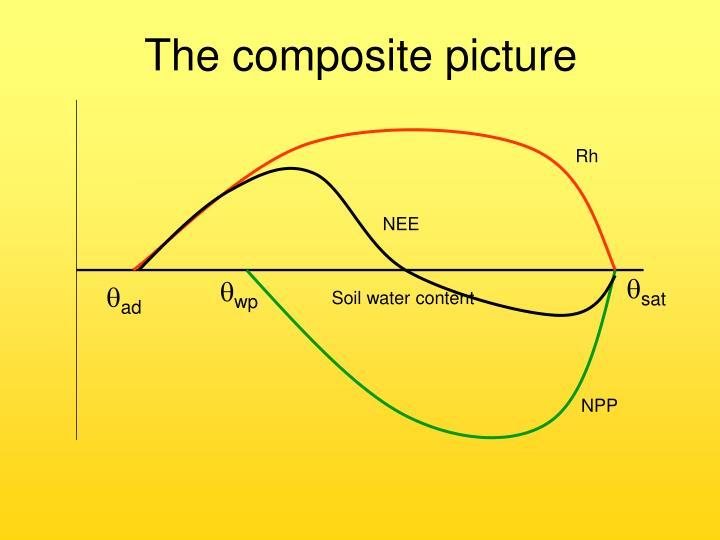 The composite picture