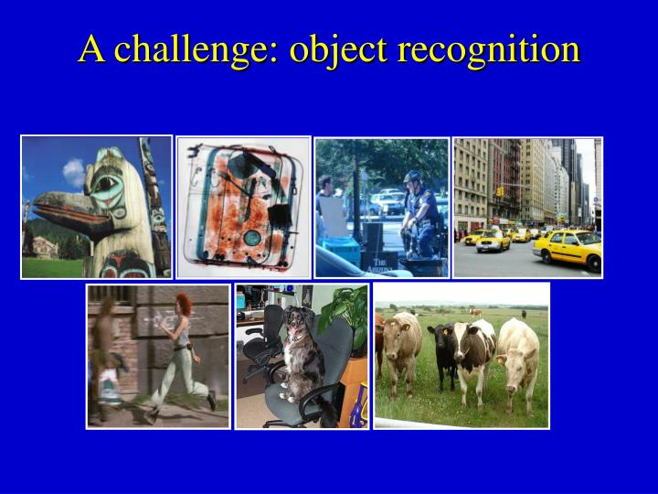 A challenge: object recognition