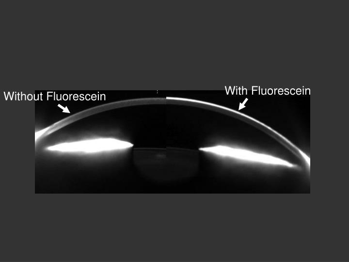 With Fluorescein