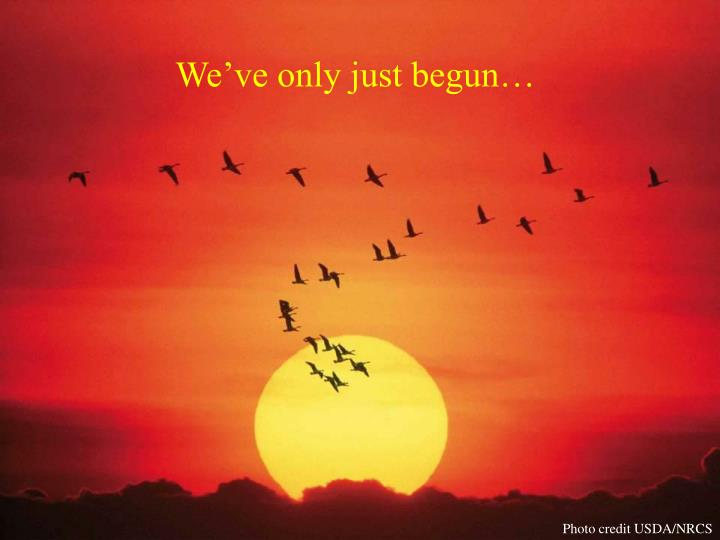 We've only just begun…