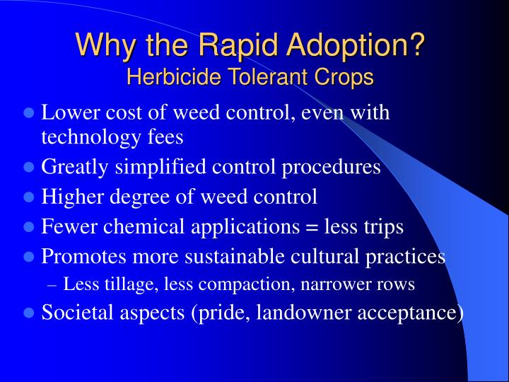 Why the Rapid Adoption?