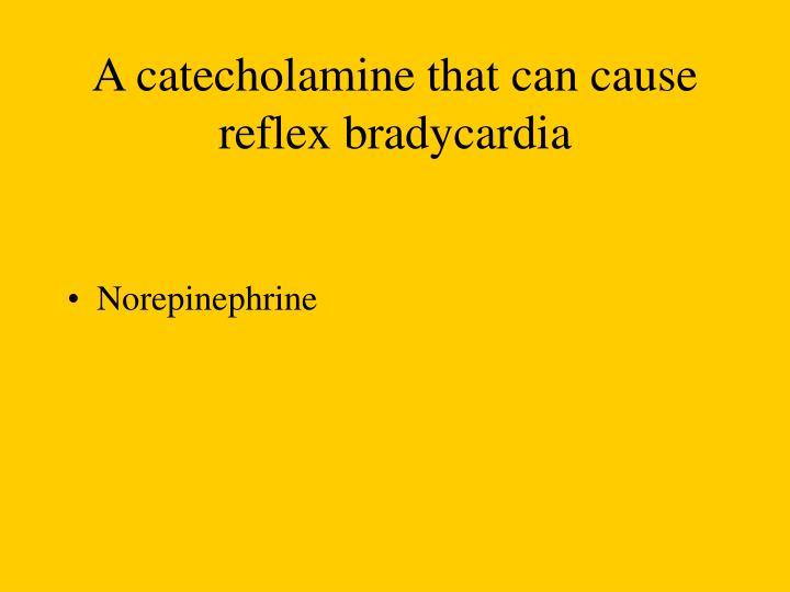 A catecholamine that can cause reflex bradycardia