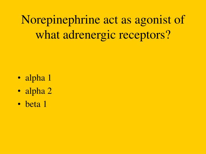 Norepinephrine act as agonist of what adrenergic receptors?