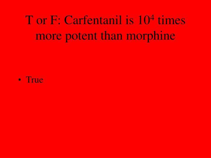 T or F: Carfentanil is 10