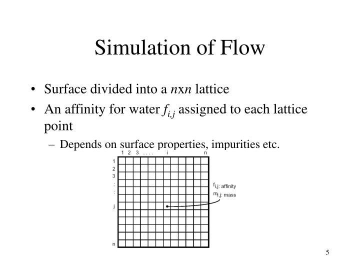 Simulation of Flow