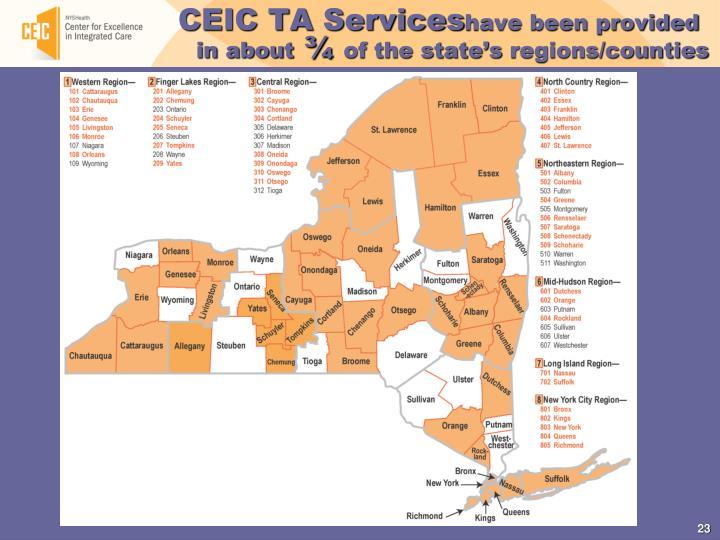 CEIC TA Services