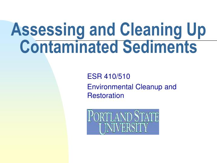 Assessing and cleaning up contaminated sediments