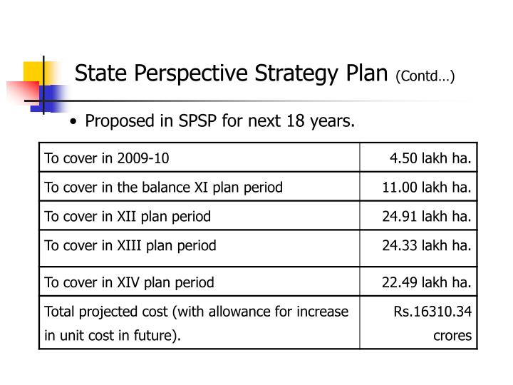 State Perspective Strategy Plan
