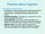 theories about cognition3