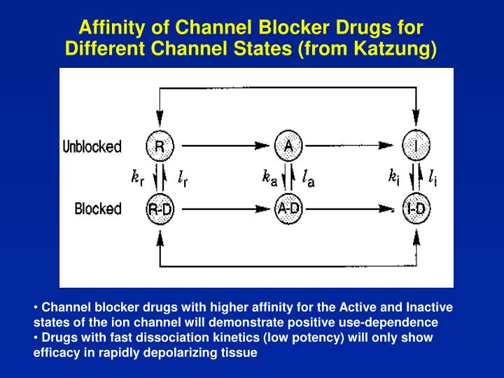 Affinity of Channel Blocker Drugs for Different Channel States (from Katzung)
