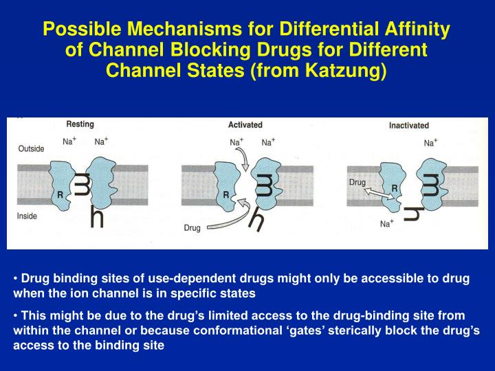 Possible Mechanisms for Differential Affinity of Channel Blocking Drugs for Different Channel States (from Katzung)