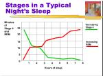 stages in a typical night s sleep1