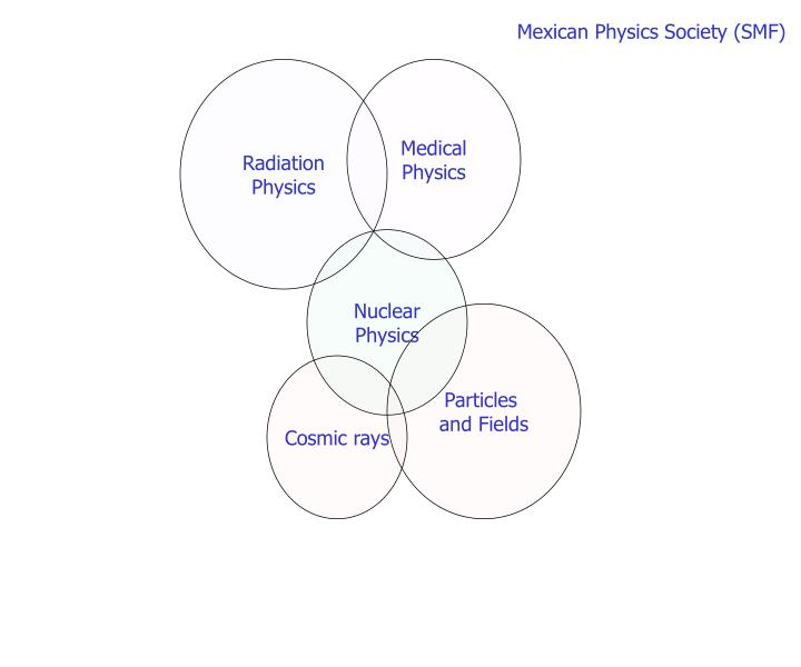 Mexican Physics Society (SMF)
