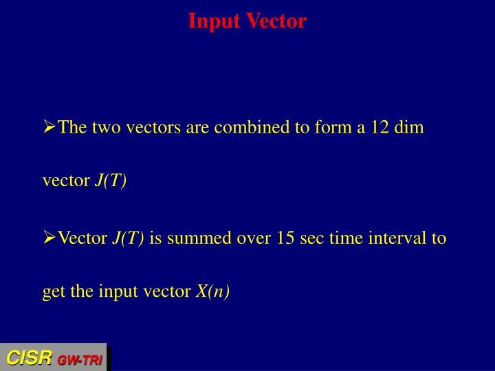 Input Vector