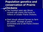 population genetics and conservation of prairie chickens