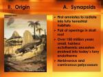 ii origin a synapsids