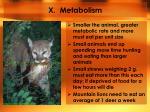 x metabolism