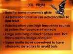 xii flight