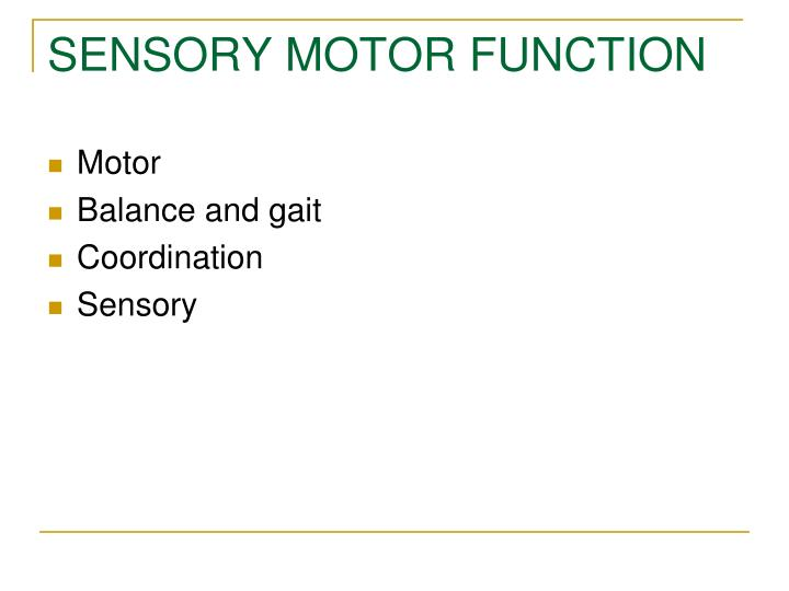 SENSORY MOTOR FUNCTION