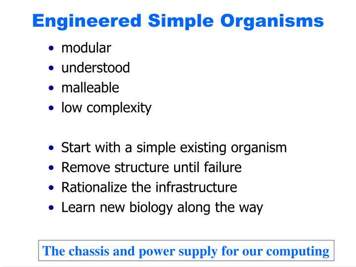 Engineered Simple Organisms
